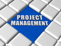 Project management in boxes d letters over blue between grey keyboard business growth concept Stock Image