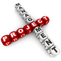 Project management words white background toy blocks red colored project word Royalty Free Stock Photo