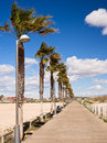 Promenade in lo pagan spain and boardwalk lined with palm trees across the nature reserve holiday resort on the mar menor murcia Stock Photos
