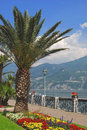 Promenade from Menaggio,Lake Como Stock Image