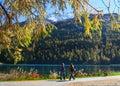 Promenade on the swiss lake Royalty Free Stock Photo