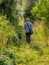 Promenade young woman taking a walk with german shepherd puppy in the countryside Stock Images