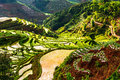 That promise terraces in yunnan eastphoto tukuchina industry agriculture natural Stock Photo