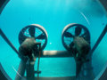 Propellers Under The Water