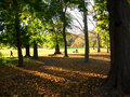 Prospect Park, Brooklyn, New Y Royalty Free Stock Photos