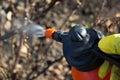 Protecting plant from vermin spring garden work hand sprayer garden Royalty Free Stock Photos