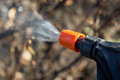 Protecting plant from vermin spring garden work hand sprayer garden Royalty Free Stock Images