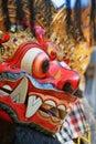 Protective spirit and Bali island symbol - Barong Royalty Free Stock Photo