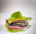 Protein burger lettuce wrap with toppings shot copyspace composition Royalty Free Stock Photo