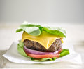 Protein burger wrapped in lettuce with selective focus Stock Photo