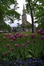 Protestant Church, Tromso Royalty Free Stock Photo