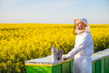 Proud apiarist on the rapeseed field near his hives looking into the sun selective focus copy space Royalty Free Stock Images