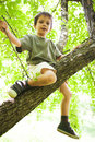 Proud boy climbed in tree looking down Royalty Free Stock Image