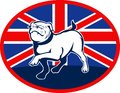 Proud English bulldog flag british Stock Photo