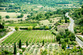 Provence typical landscape field france Royalty Free Stock Photo