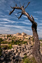 Provence village Gordes overlook with dry tree Royalty Free Stock Photos