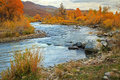 Provo River in the Wasatch Mountains. Royalty Free Stock Photo