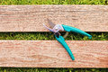 Pruner on wood board green Stock Photography