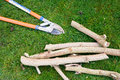 Pruning branches garden loppers and cut on a grass background Stock Photo