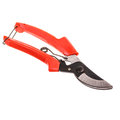 pruning shears Royalty Free Stock Photo