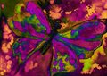 Psychedelic pink and green butterfly with orange and yellow. Royalty Free Stock Photo