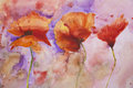 Psychedelic splashed poppies watercolour painting
