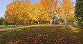 Public park autumnl panorama gresham oregon in autumn colors or Stock Image