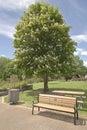 Public park in Boise Idaho. Royalty Free Stock Photo
