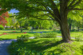Public park view of the large gardens in the center of halifax nova scotia known as the halifax gardens Royalty Free Stock Image