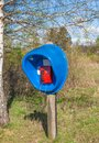 Public phone box in forest blue Stock Photos