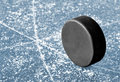 Puck Royalty Free Stock Photography
