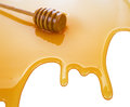 Puddle of honey Royalty Free Stock Images