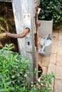 Puerta romántica del invernadero Fotografía de archivo libre de regalías