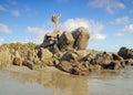 Puerto Escondido, Mexico Royalty Free Stock Photo