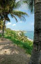 Puerto Rico Coastline Royalty Free Stock Photo