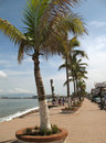 Puerto Vallarta Mexico Stock Photography