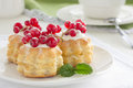 Puff pastry with cream and currant Stock Photography