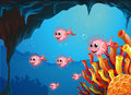 Puffer fishes inside the sea cave illustration of Royalty Free Stock Images