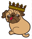 Pug cute puppy in the crown vector cartoon illustration dog on white background Stock Images