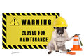Pug dog with yellow constructor safety helmet and warning sign with text closed for maintenance