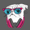Pug in glasses and headphones. Vector illustration.