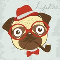 Pug smoking pipe illustration of Royalty Free Stock Image