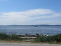 Puget sound ferry boat glides across the water view taken from lincoln park beach Royalty Free Stock Photo