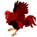 Pugnacius Red Black Rooster On...
