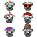 Pugs set of icon icons with different hats female and male types with different types head accessories hats bows flowers Stock Photo