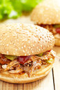 Pulled pork sandwich see my other works in portfolio Royalty Free Stock Photos
