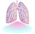 Pulmonary diagnostics web icons to create web sites Royalty Free Stock Images