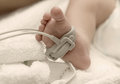 Pulse oximeter sensor on a baby foot Royalty Free Stock Photo