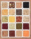 Pulses sampler dried food in white porcelain dishes Stock Photos