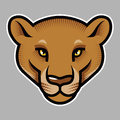 Puma s head on grey background vector illustration Royalty Free Stock Photos
